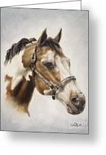 Show Off Greeting Card by Cathy Cleveland