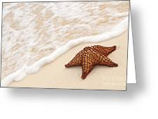 Starfish And Ocean Wave Greeting Card by Elena Elisseeva