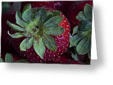 Strawberry 2 Greeting Card by Robert Ullmann