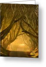 The Dark Hedges IIi Greeting Card by Pawel Klarecki