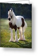 The Lovely Cristal Greeting Card by Terry Kirkland Cook