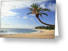 Tropical Beach Greeting Card by Michael Szoenyi