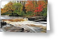 Unnamed Falls Greeting Card by Michael Peychich