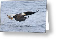 Up Up And Away Greeting Card by Gerry Sibell