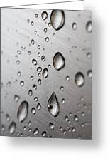 Water Drops Greeting Card by Frank Tschakert