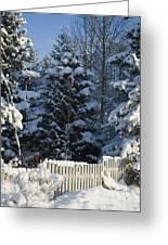 Winter Greeting Card by Igor Sinitsyn