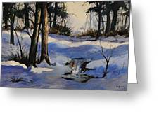 Winter Shadows Greeting Card by Bob Hallmark