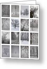 Winter Time Greeting Card by Gabriela Insuratelu