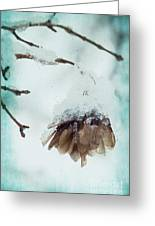 Wintertime Greeting Card by Angela Doelling AD DESIGN Photo and PhotoArt