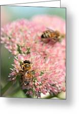 2 Bees Greeting Card by Angela Rath