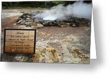 Furnas - Azores Greeting Card by Gaspar Avila