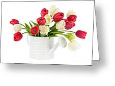 Red And White Tulips Greeting Card by Elena Elisseeva