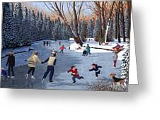 Winter Fun At Bowness Park Greeting Card by Neil Woodward