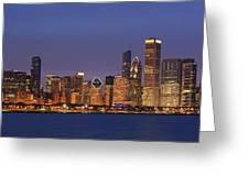 2010 Chicago Skyline Greeting Card by Donald Schwartz