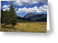 Yellowstone Vista Greeting Card by Marty Koch