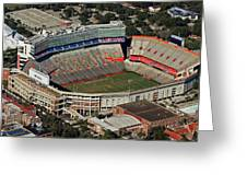 Florida Field Greeting Card by Farol Tomson