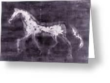 Horse Greeting Card by Julie Niemela