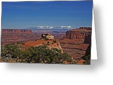 Canyonlands National Park Greeting Card by Mark Smith