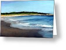 A Beach In Smithfield Greeting Card by Cindy Plutnicki