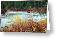 A Bend In The River Greeting Card by Lynn Bawden