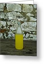 A Bottle Of Limoncello Sits On A Picnic Greeting Card by Todd Gipstein