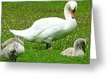 A Caring Mother Greeting Card by Daniel Csoka