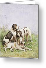 A Group Of French Hounds Greeting Card by Charles Oliver de Penne