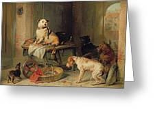 A Jack In Office Greeting Card by Sir Edwin Landseer