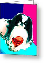 A Japanese Chin And His Toy Greeting Card by Kathleen Sepulveda