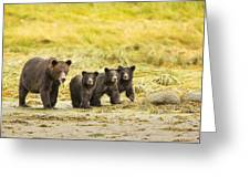 A Large Family Greeting Card by Tim Grams