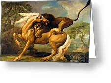 A Lion Attacking A Horse Greeting Card by George Stubbs