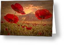 A Poppy Kind Of Morning Greeting Card by Debra and Dave Vanderlaan