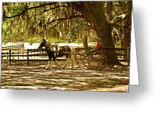 A Stroll In The Park Greeting Card by Adele Moscaritolo