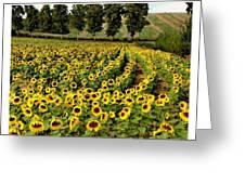 A Thousand Suns Greeting Card by Joe Bonita