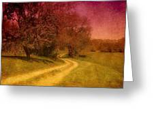 A Winding Road - Bayonet Farm Greeting Card by Angie Tirado