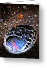 Abalone Greeting Card by Robert Foster