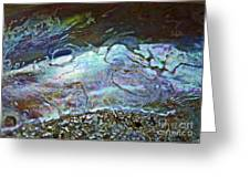 Abalone Stories Greeting Card by Gwyn Newcombe