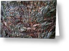 Abstract Tree Bark Greeting Card by Juergen Roth