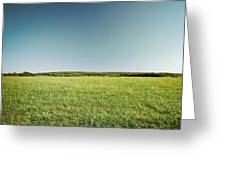 Across The Field Greeting Card by Ryan Kelly