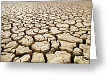 Africa Cracked Mud Greeting Card by Larry Dale Gordon - Printscapes