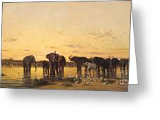African Elephants Greeting Card by Charles Emile de Tournemine