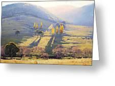 Afternoon Light Tarana  Greeting Card by Graham Gercken