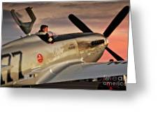'air Racing Legends Jimmy Leeward And  The Galloping Ghost' Greeting Card by Gus McCrea