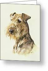 Airedale Greeting Card by Barbara Keith