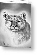 Alert Cougar Greeting Card by Bob Patterson