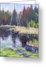 Algonquin Marsh Greeting Card by Diane Daigle