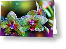 Alien Orchids Greeting Card by Bill Tiepelman