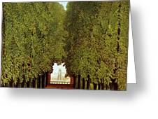 Alleyway in the Park Greeting Card by Henri Rousseau