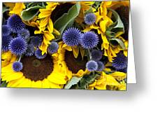 Allium And Sunflowers Greeting Card by Jane Rix
