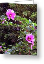 Althea Greeting Card by Fred Jinkins